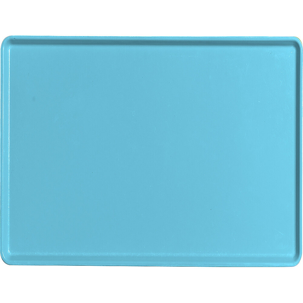 "Robin Egg Blue, 12"" x 16"" Healthcare Food Trays, Low Profile, 12/PK"