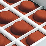 Silicone Candy / Chocolate Mold, Pallet Round Shape